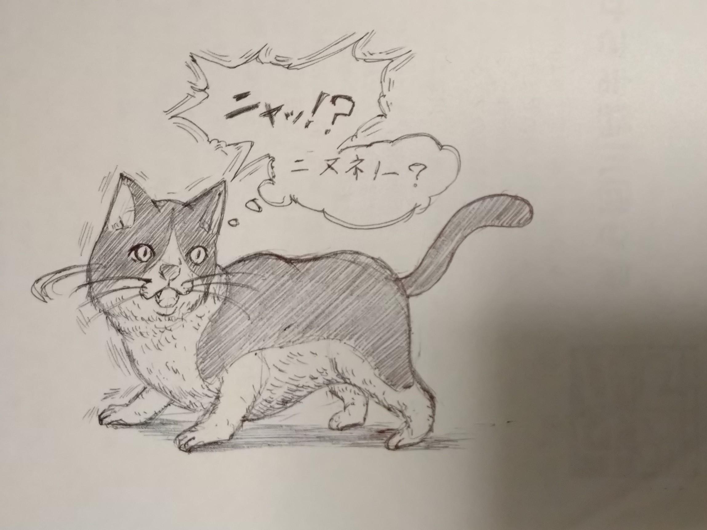猫,ねこ,落書き,イラスト,妄想